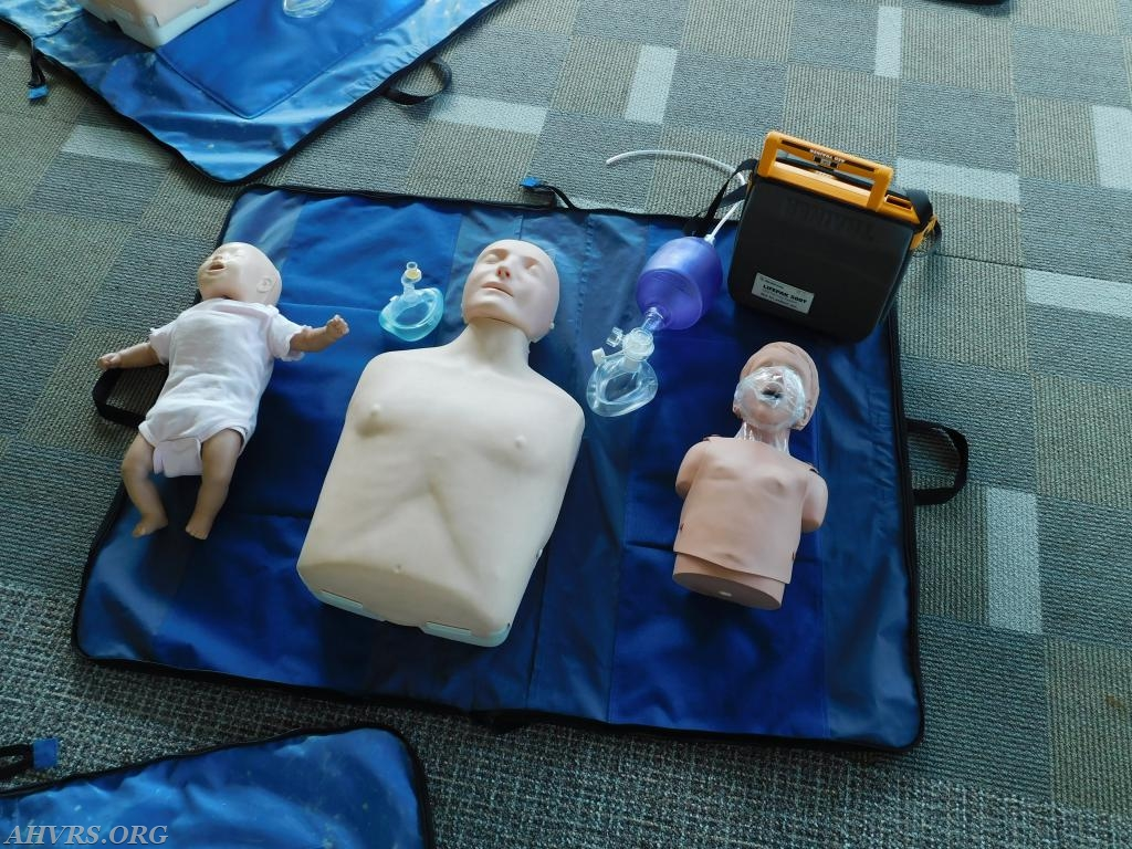 infant, adult and child manikins